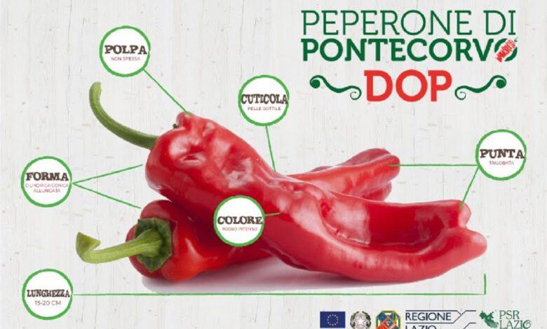 Festa del Peperone DOP di Pontecorvo - V Edizione - Eventi 2021