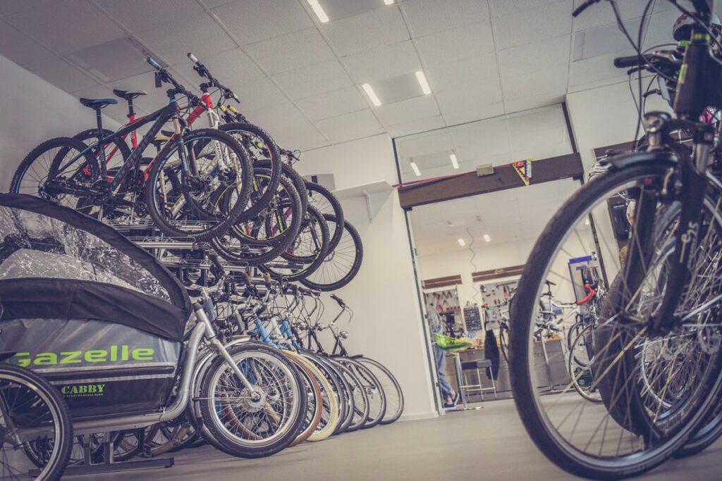 Negozio Biciclette Frosinone e Provincia